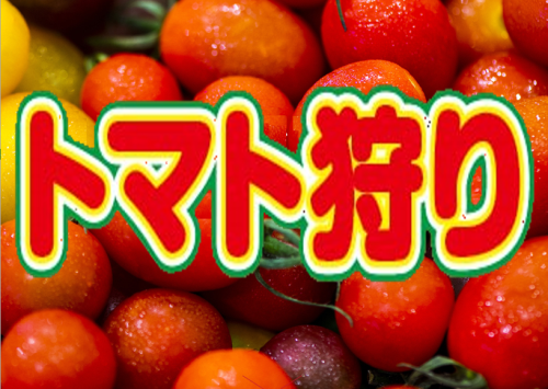 ワンダーファームでトマト狩りプラン[素泊まり]