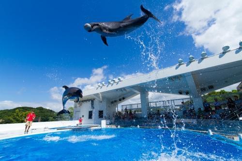 【九十九島水族館「海きらら」入場券付プラン】 ■ルームチャージ