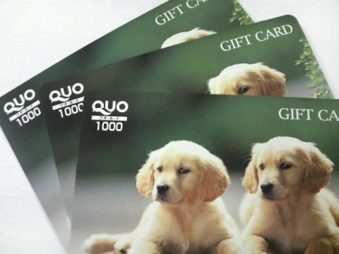 【出張応援】3000円QUOカードセットプラン