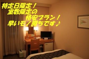 特定日・室数限定!【訳あり】格安内側プラン!「素泊まり」