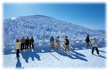 【素泊り】 ウィンター【カップル】プラン♪【めぐみの湯有】 帰省・レジャー・スキーに!