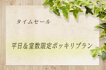 【タイムセール】価格で勝負!平日&室数限定のポッキリプラン~素泊まり~