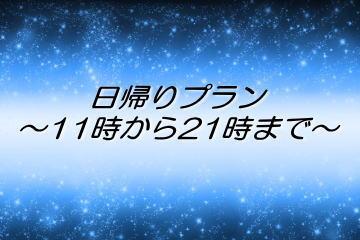 日帰りデイユース 【昼11時~夜21時】