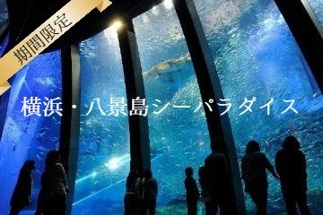 今だけ!【期間限定】横浜・八景島シーパラダイス★アクアミュージアムプラン