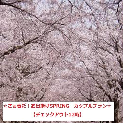 ☆さぁ春だ!お出掛けSPRING カップルプラン☆ 【チェックアウト12時】(素泊まり)