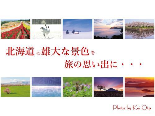 【お年玉企画!和洋選べる朝食付】QUOカード&レイトチェックアウト&北海道の風景写真ポストカードを旅の思い出に・・