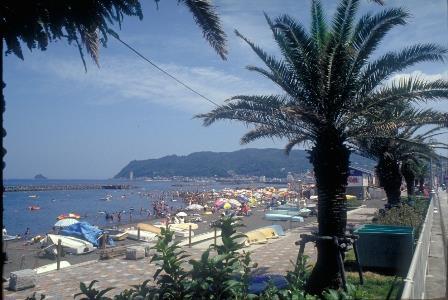 【夏休み☆スタンダード】プールのある宿☆25Mの開放感満喫サイズ&海の家送迎付き