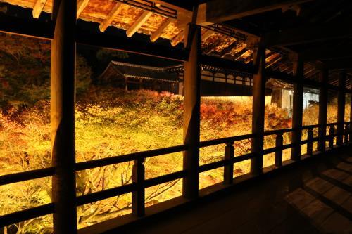 【東福寺夜間拝観】レイトアウト12時でゆったりステイ(素泊まり)※GoToトラベル割引適用外