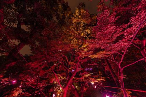 【GoToトラベル割引対象】大阪太閤園「淀川邸」秋の特別メニュー「奏~かなで~」付~宿泊プラン